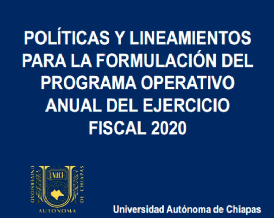 Politicas y lineamientos POA 2020